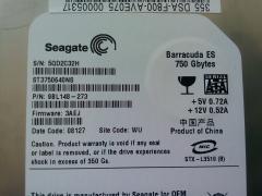 2x Seagate Barracuda ES 750 Gbytes (1500Gbytes TOTAL)